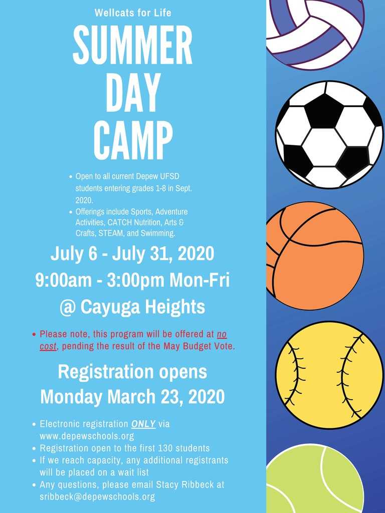 Wellcats for Life Summer Day Camp 2020 Flyer